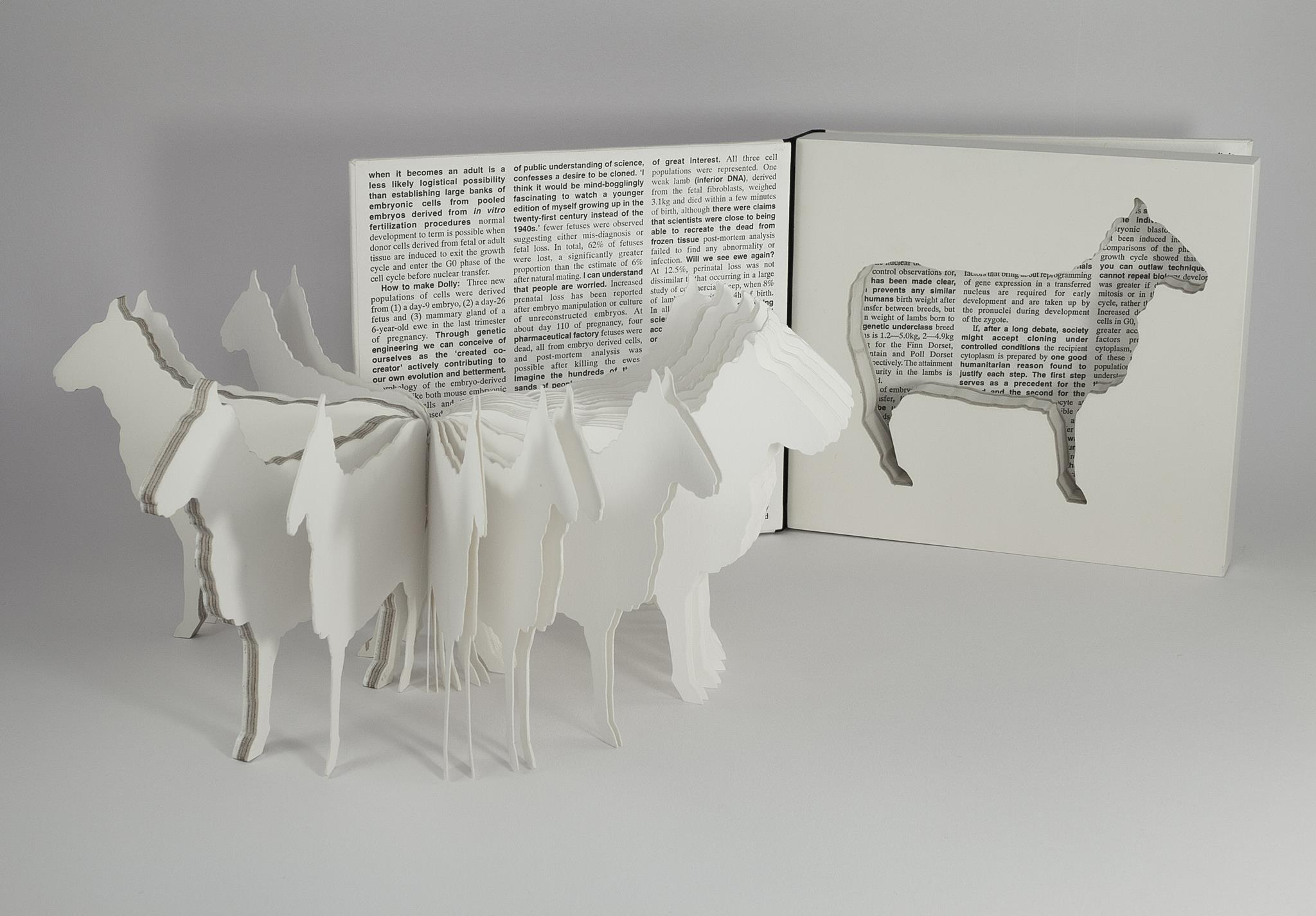 Full view of artist book Dolly: Edition Unlimited by Karen Bleitz, a pop-out jig-sawed book-work on the theme of the cloned sheep, Dolly, with a freestanding herd of sheep integrated into the formof the book.